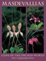 Masdevallias: Gems of the Orchid World