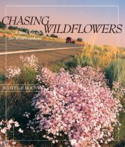 Chasing Wildflowers
