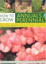 How to Grow Annuals & Perennials