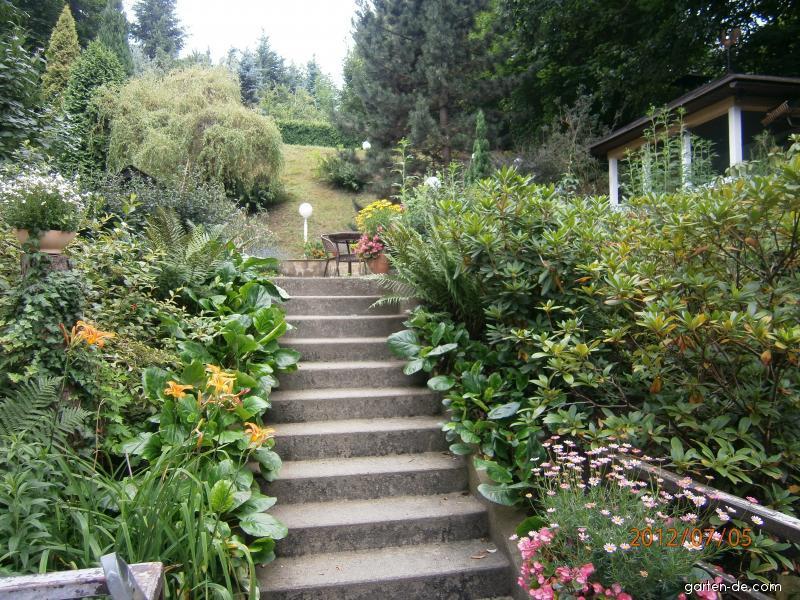 Zahrada červenec 2012