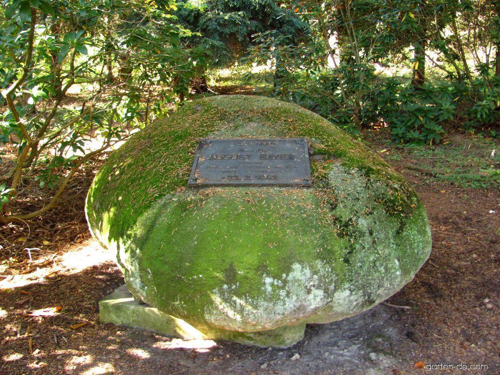 Arboretum Křtiny - i pomník je přírodní