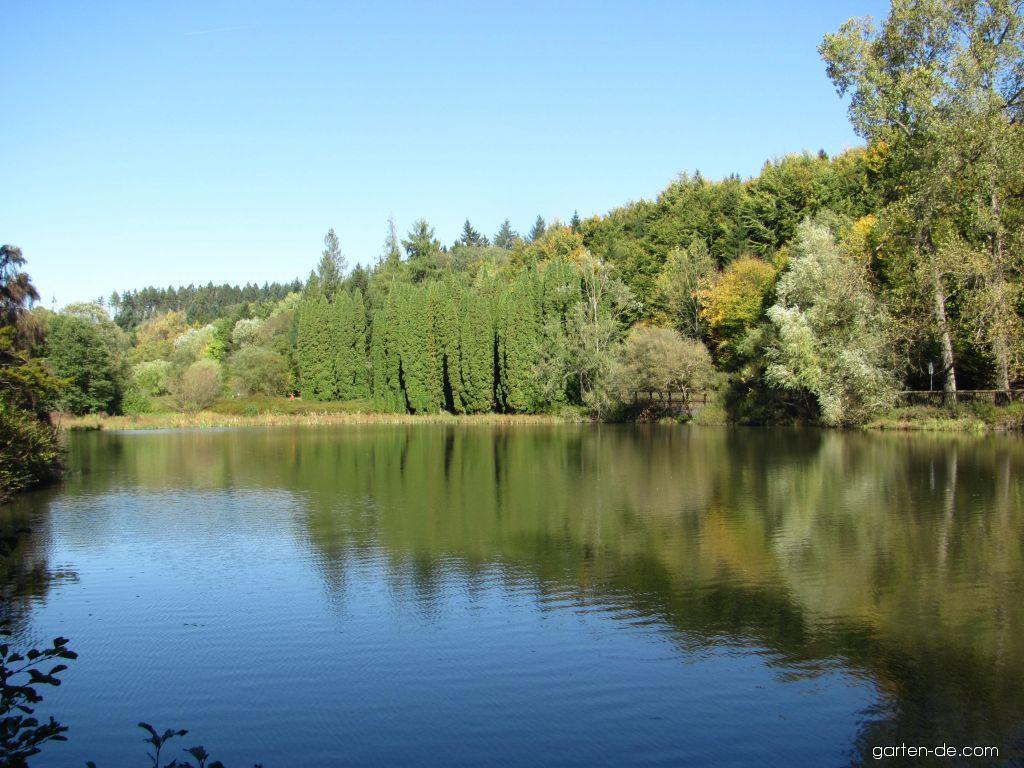 Arboretum Křtiny - jezírko
